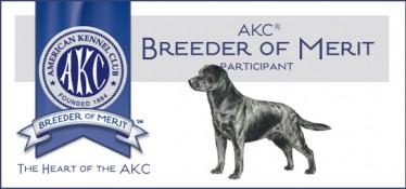 AKC breeder of Merit-Endless Mt. Labradors