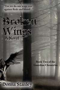 """Cover Concept for sequel to New Wings, entitled, """"Broken Wings"""""""