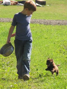 Ryan and puppy- Endless Mt. Labradors