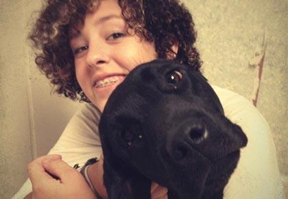 reinforcing labrador barking habits
