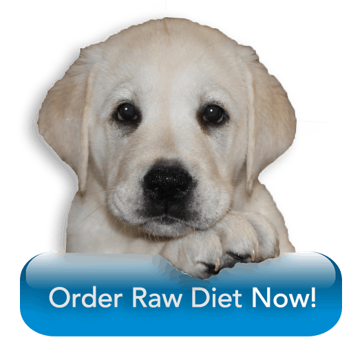 Order-Raw-Diet-From-BARF-World